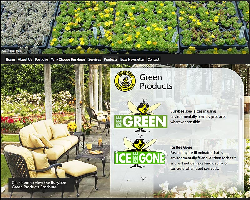 Busybee Green Products screenshot - Torry Courte Portfolio