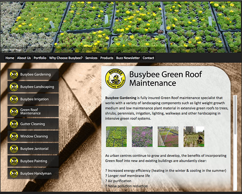 Busybee Green Roof Page - Torry Courte Portfolio image