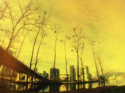 Torry Courte – City Bridge Photo
